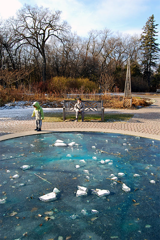 English garden ice pool antiquark winnipeg pictures for English garden pool